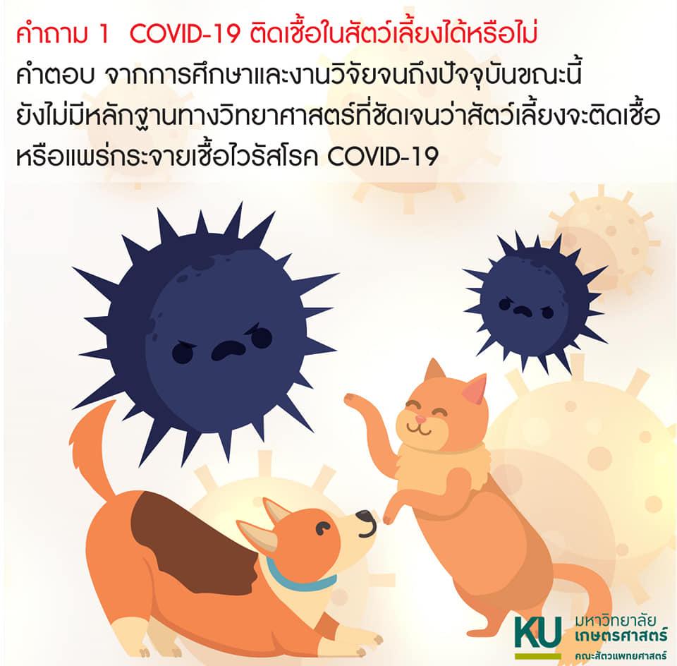 โควิด-19 ติดเชื้อน้องหมาน้องแมวได้หรือไม่